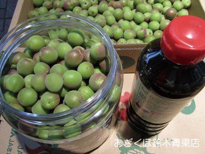 カリカリ梅の作り方 パート3(醤油漬け)