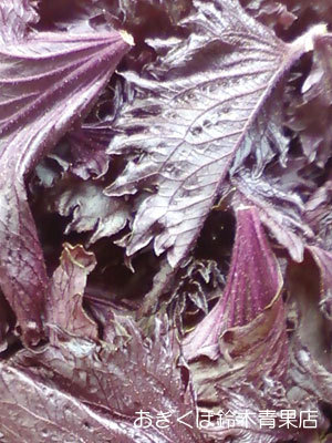赤紫蘇の下ごしらえ – 大事なのは灰汁抜き作業