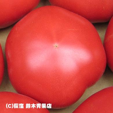 トマトの保存に冷蔵庫はX、でも追熟後は○
