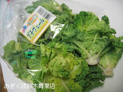 静岡生まれの「プチ・ヴェール(petit vert)」