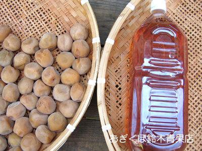 土用干し後の梅酢を保存