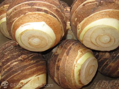 里芋の親分入荷 – 佐賀の特産「福頭(ふくがしら)」