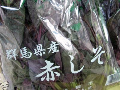 【最終入荷】群馬産 縮緬赤紫蘇入荷