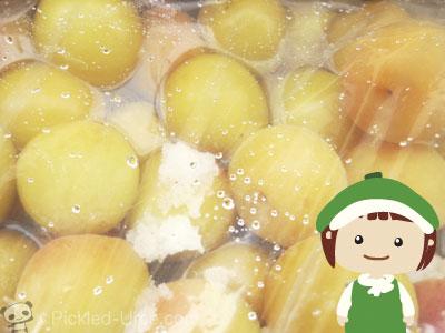 申年(平成28年)の梅仕事 – 梅酢の上がりも合格っ!