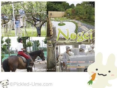 【印刷・デザイン】都立農芸高等学校 PTA広報誌「Nogei」